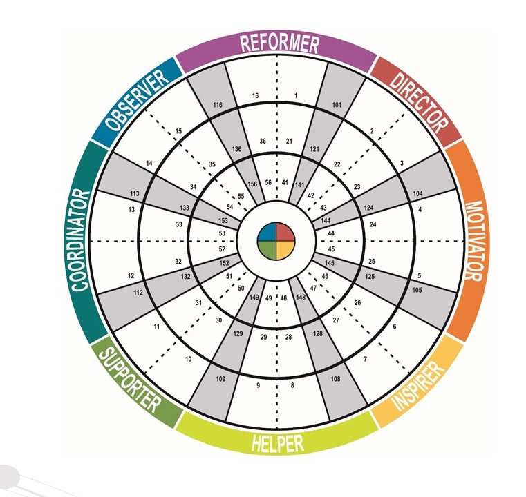 Insights Discovery 8 type wheel