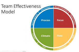 Insights Discovery Team Effectiveness Model